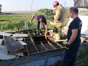 Avcılar'da su kuyusundan kurbanlık dana kurtarma operasyonu