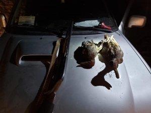 Afyonkarahisar'da kaçak avcılara cezai işlem uygulandı