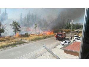 Develi'de bağ yangını