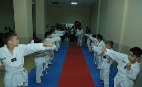 Halkapınar'da tekvando kursu açıldı