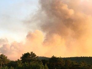 GÜNCELLEME - Eskişehir'de orman yangını