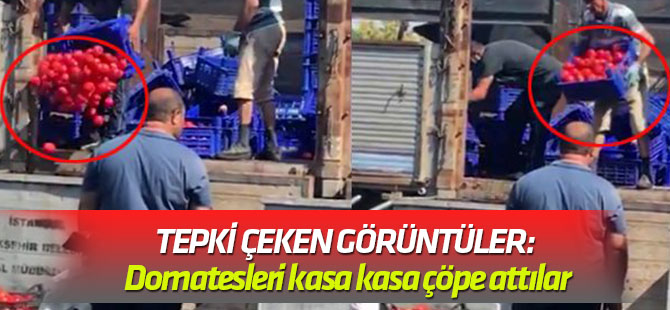 Bayrampaşa halinde tepki çeken görüntüler: Domatesleri kasa kasa çöpe attılar