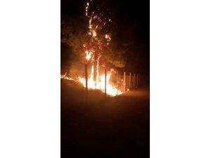 Çocukların torpille oyunu yangına neden oldu