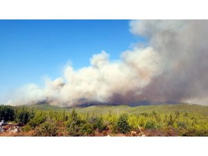 Muğla'daki orman yangınları devam ediyor