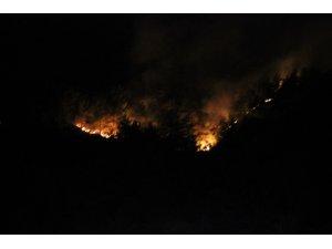 Hatay'da kontrol altına alınan orman yangını yeniden alevlendi