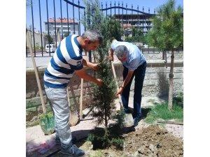 Müslime-Ali Yaman İlkokulundan ağaçlandırma kampanyası
