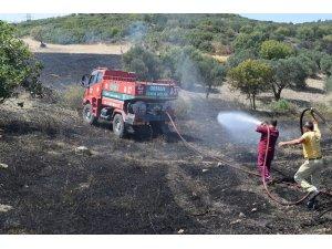 Aliağa'daki yangının, ormanlık alana sıçramaması için büyük mücadele