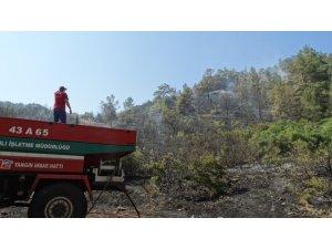 Domaniç'te orman yangını