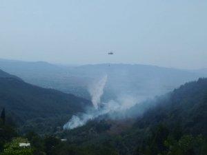 Osmaniye'de 1,5 hektarlık çam ve makilik alan yandı
