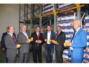 Egeli yaş meyve sebze ihracatçıları, Kuzey Makedonya pazarında ilgi gördü