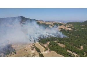 GÜNCELLEME - Denizli'de orman yangını