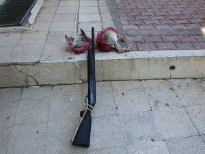 Yunak'ta kaçak avcı yakalandı