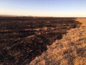 300 dönümlük mera yangında kül oldu