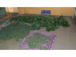Sakarya'da uyuşturucu operasyonu: 4 gözaltı