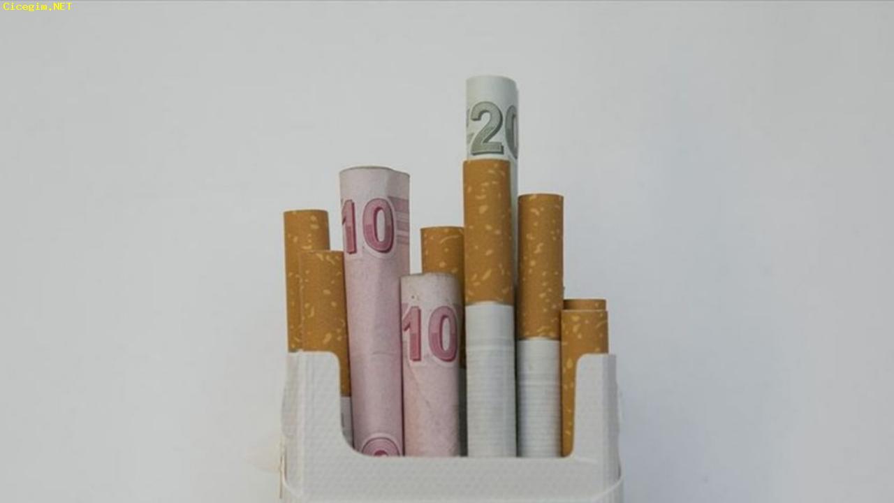Her 3 kişiden biri... Yasak ve zamlar sigara tüketimini nasıl etkiledi?