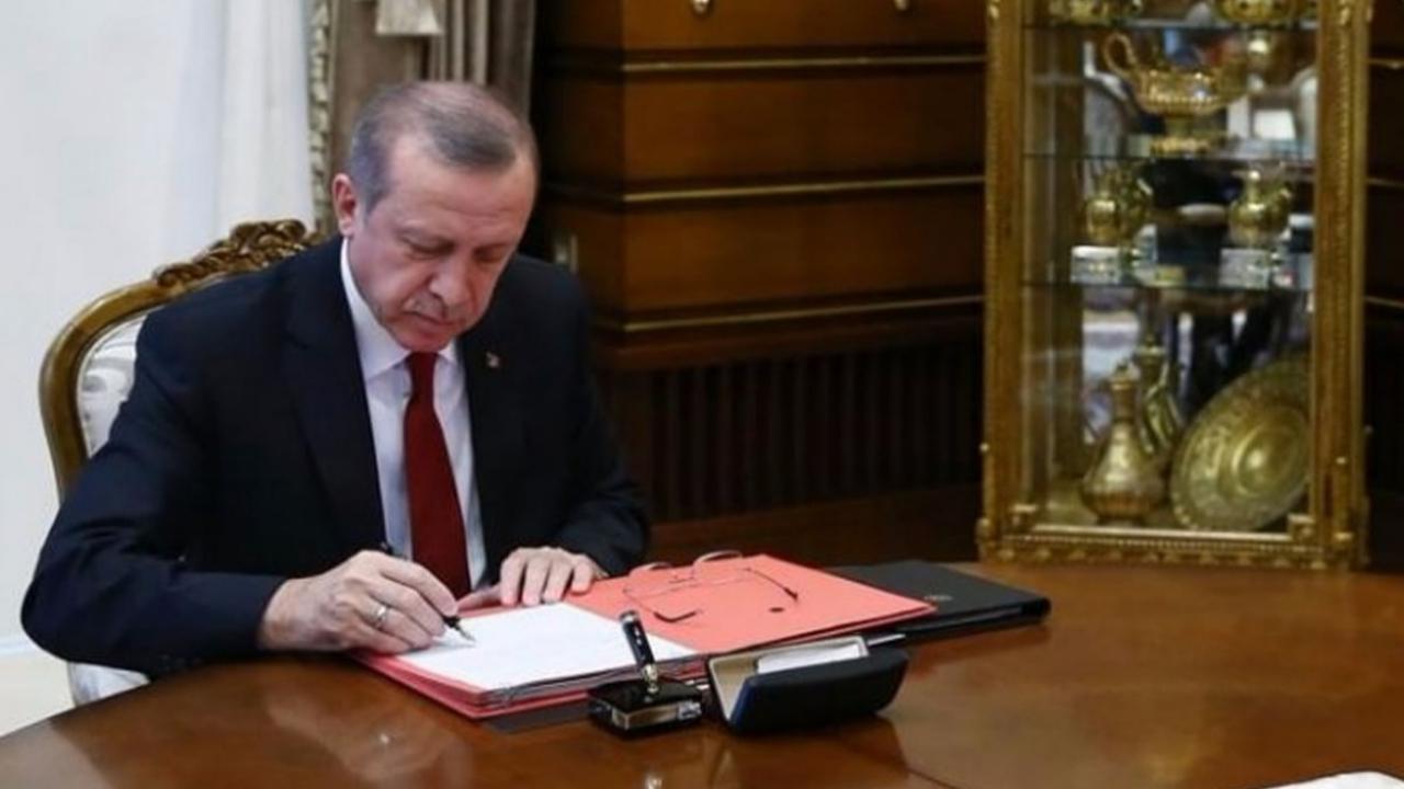 Sigorta alanında büyük yenilik Erdoğan imzaladı, resmen kuruldu!