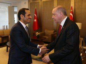 Erdoğan'ın,  Sani'yi kabulü sona erdi