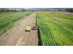 Tokat'ta 243 bin 490 dekar tarım arazisi sulandı