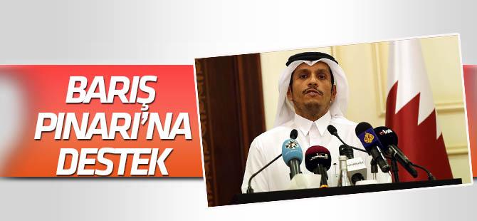 Katar'dan Barış Pınarı Harekatı'na destek