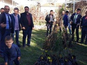 Bozkır'da çiftçilere ceviz ve badem fidanı dağıtıldı