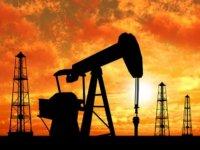 """""""Yüksek petrol fiyatları arama-üretim faaliyetlerine canlılık getirdi"""""""