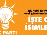 AK Parti Konya'da yeni görevlendirmeler...