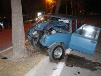 Konya'da ehliyetsiz sürücü ağaca çarptı