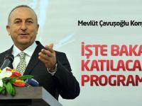 Bakan Çavuşoğlu Konya'ya geliyor
