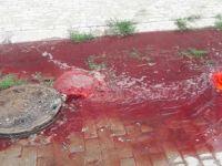 Aydın'da bir rögardan fışkıran kan paniğe neden oldu, gerçek sonra anlaşıldı