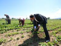 Özaltun, tarım işçilerini ziyaret etti