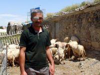 Çobana cinsel ilişki teklif edip, parasını çaldılar