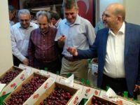Beşinci Akşehir Kirazı Kültür ve Sanat Festivali yapıldı
