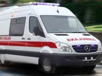 Hatay'da eşeğin çifte attığı kişi öldü
