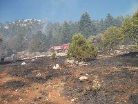 Beyşehir'deki orman yangını söndürüldü