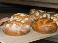 Çöpten Çıkarılan Ekmekleri Un Haline Getirip Pasta Yaptılar