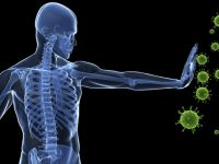 Bağışıklık sisteminizi güçlendirecek 10 besin