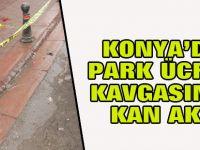 Park ücreti ödememek için kan akıttı!