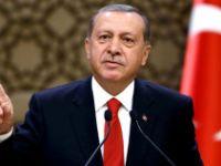 Erdoğan'ın gelişi Madagaskar'daki FETÖ'cüleri korkuttu