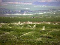Bakan Çelik: Ovalar 'tarımsal sit' gibi korunacak