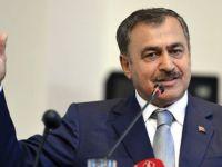 Bakan Eroğlu açıkladı! Evlilik programları kaldırılıyor