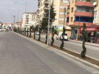 Ereğli prestij caddelerle donanıyor