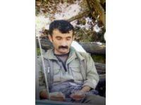 """GÜNCELLEME - Terör örgütü PKK'nın """"sözde özel güç sorumlusu"""" öldürüldü"""
