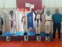 Taekwondo turnuvası Akören'de yapıldı