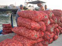 Salyangoz Karadenizli balıkçıların gelir kaynağı oldu