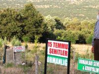 """8 bin fidan dikti, """"15 Temmuz Şehitler Ormanı"""" adını verdi"""