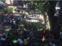 Portekiz Roman Festivali'nde facia: 11 ölü / VİDEO