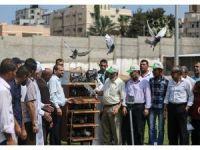 Gazze'de posta güvercinleri yarıştı