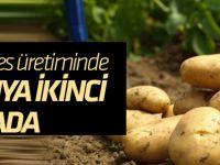 Patates üretiminde Konya ikinci