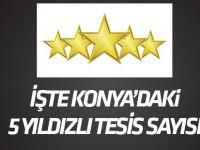 Konya'da 5 yıldızlı 5 tesis bulunuyor