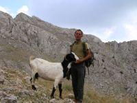 Dağın zirvesinde hayvanlarını otlatıyor